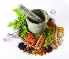 Herbs for Overactive Bladder
